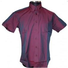 Warrior Clothing Shirt  - Dakar